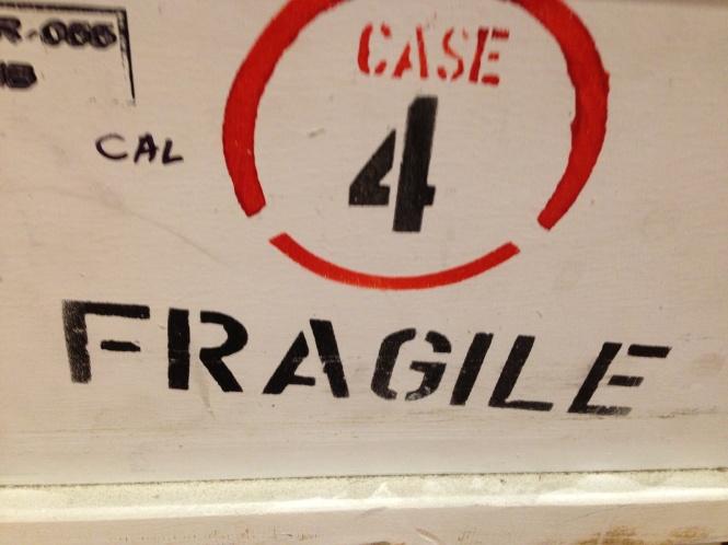 fragile IMG_4596