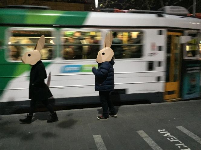human rabbits 5