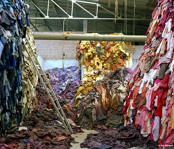 Tim Mitchell, Mutilated hosiery sorted by colour, 2005.